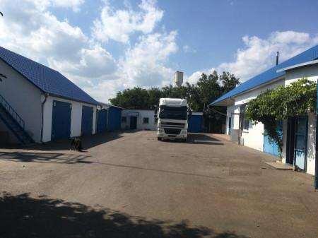 Продаю склад Фонтанка Александрийская - фото №6 объявления №34296
