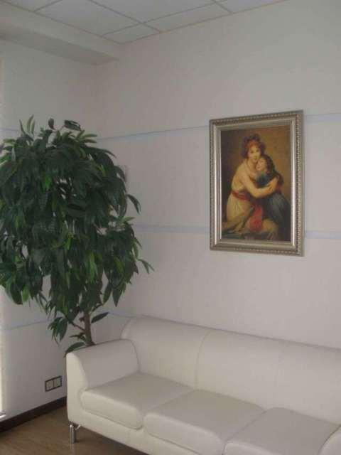 Сдаю офис в Одессе Инглези - фото №7 объявления №6750